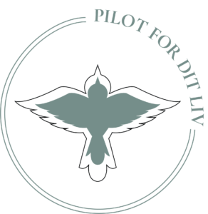 Logodesign for Pilot for dit liv